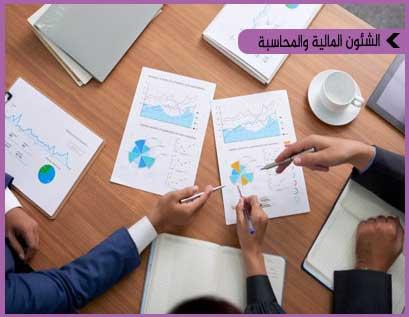 التحليل المالي والتنبؤ ووضع النماذج