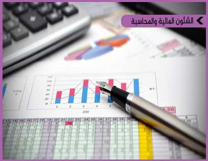 برنامج في إدارة الأعمال في المجال المالي