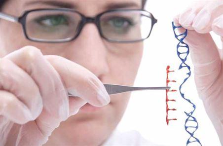 استخدام الهندسة الوراثية فى تحسين