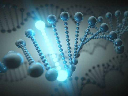 استخدام تكنولوجيا الجين فى انتاج