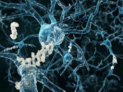 علاج الامراض الفيروسية والبكترية التى تصيب الدواجن والاسماك بتكنولوجيا الجينات